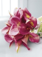 Deep Pink Calla Lily & Pearl Bridal Bouquet