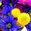 Same Day Flowers For Summer From Florist Glasgow